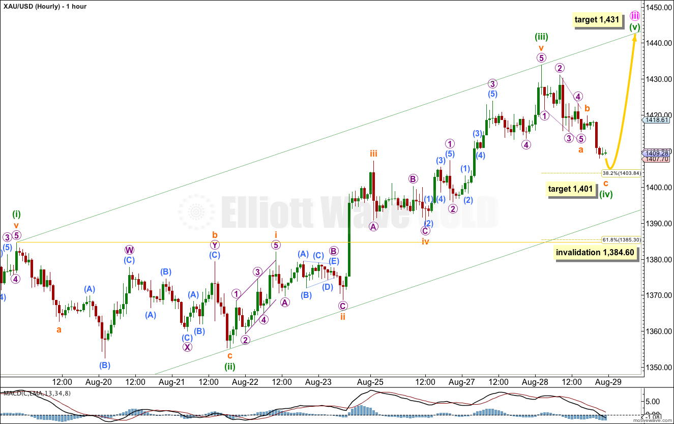 GOLD Elliott Wave Chart Hourly 2013