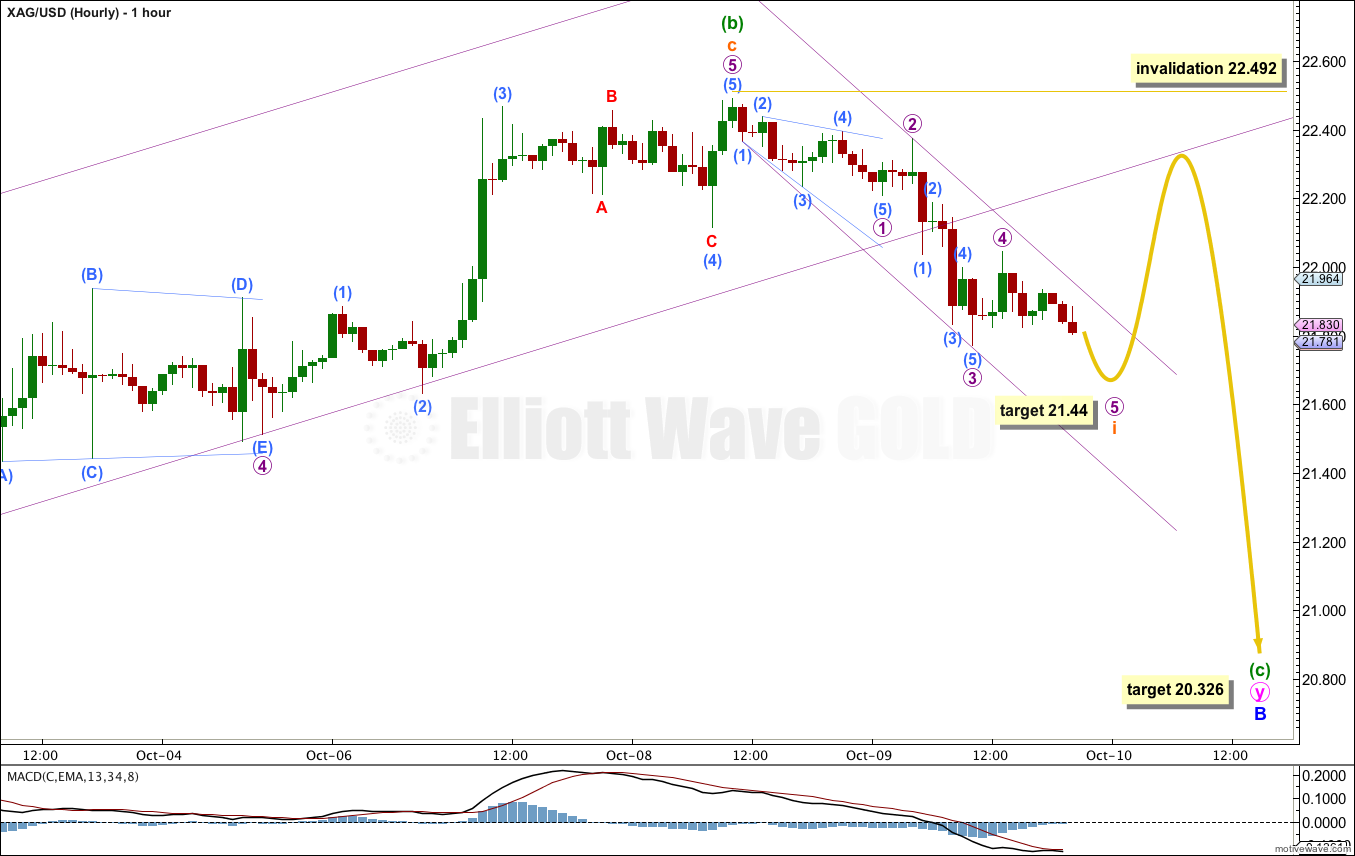 Silver hourly 2013