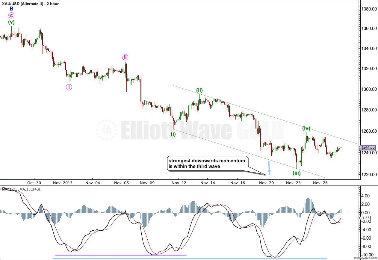 Gold Elliott Wave Chart 2 Hourly Alternate 2013
