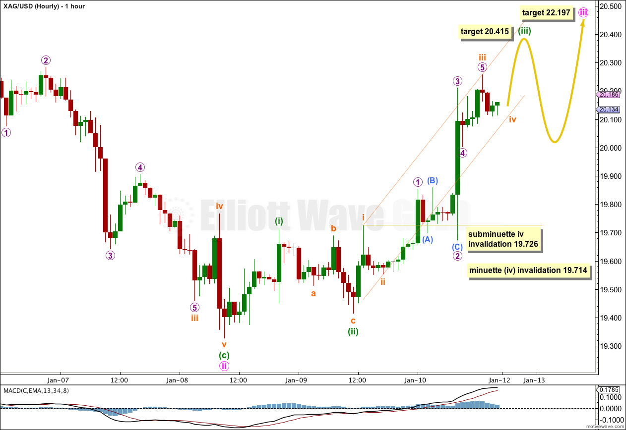 SILVER Elliott Wave Chart Hourly 2013