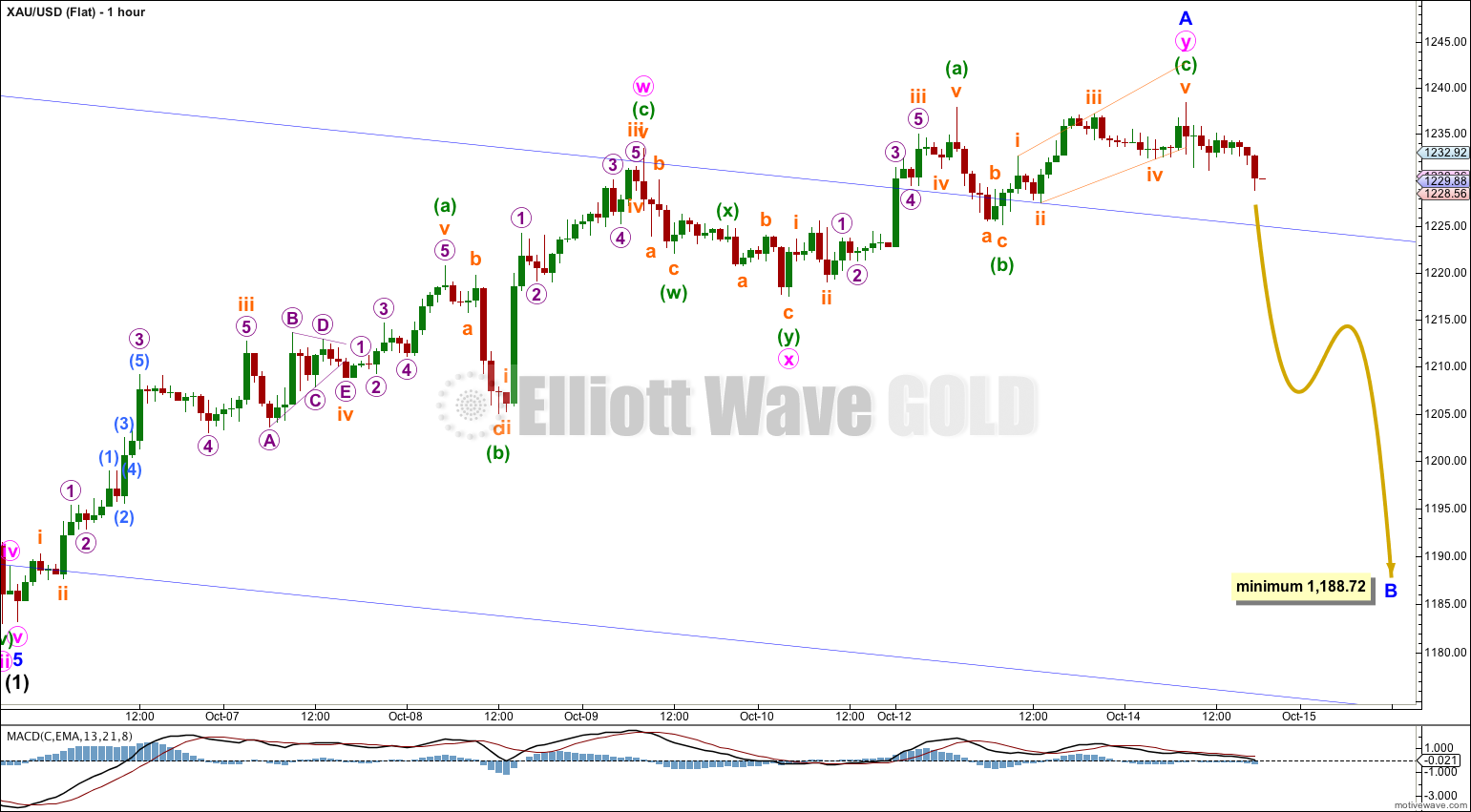 GOLD Elliott Wave Chart Hourly Flat 2014