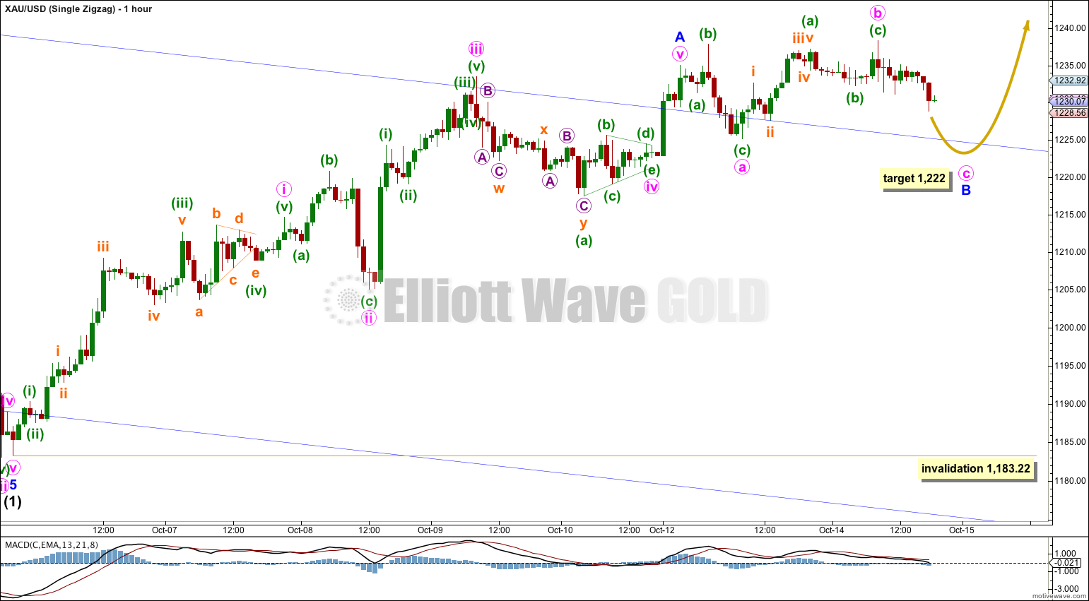 GOLD Elliott Wave Chart Hourly Zigzag 2014