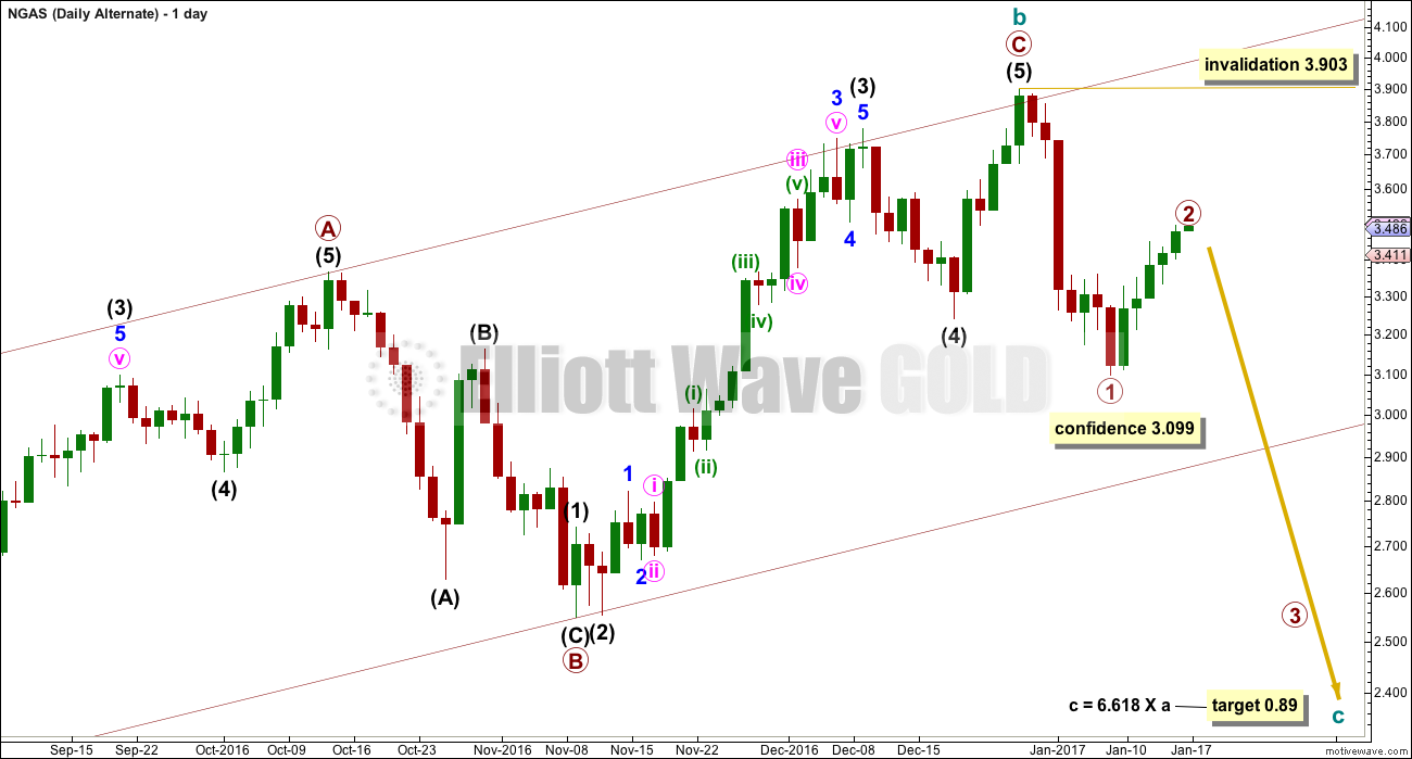 Natural Gas Elliott Wave Chart Daily 2017