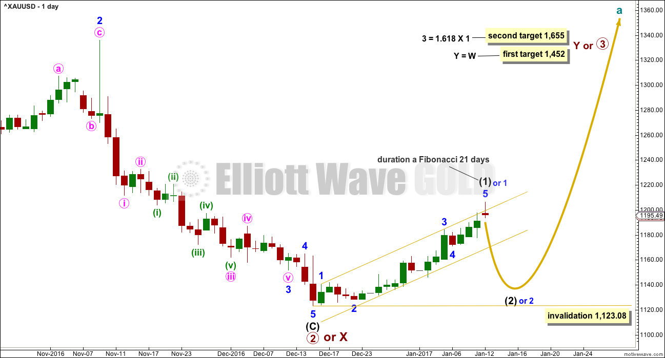 Gold Elliott Wave Chart Daily 2017