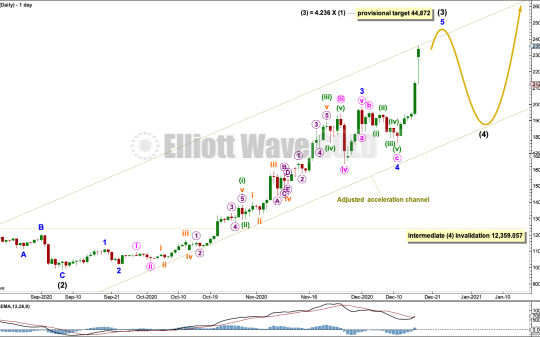 BTCUSD: Elliott Wave and Technical Analysis | Charts – December 17, 2020