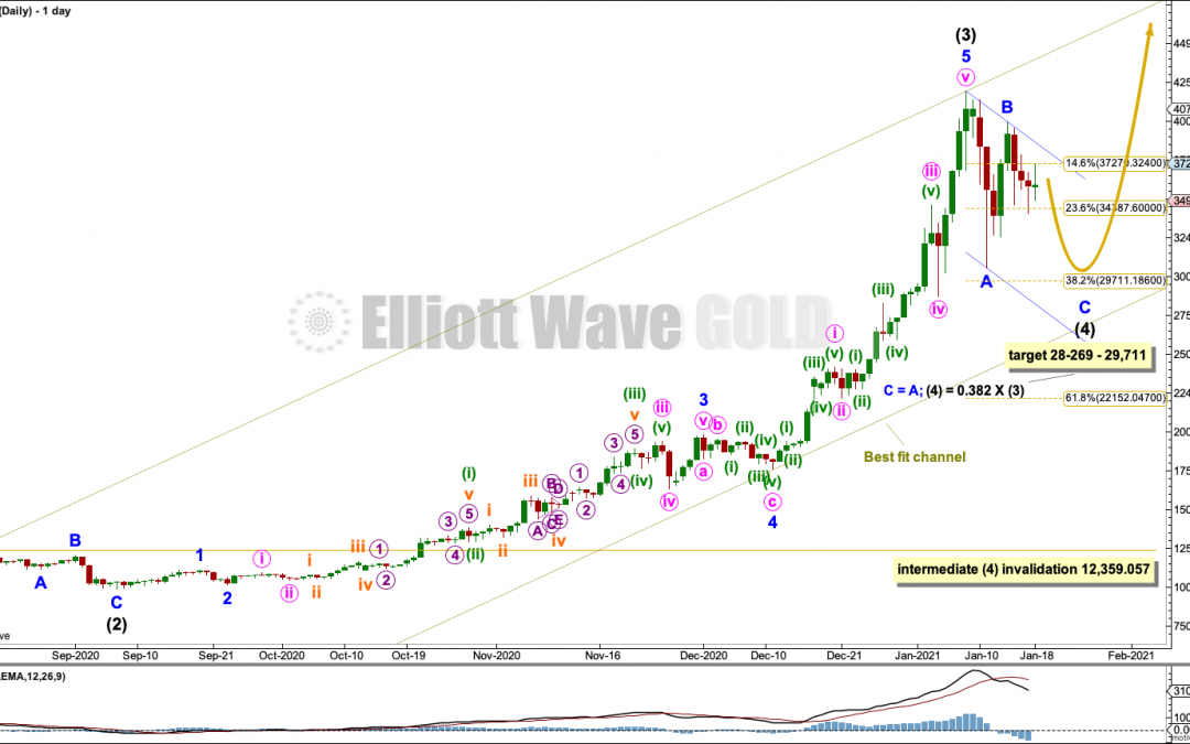 BTCUSD: Elliott Wave and Technical Analysis | Charts – January 18,  2021