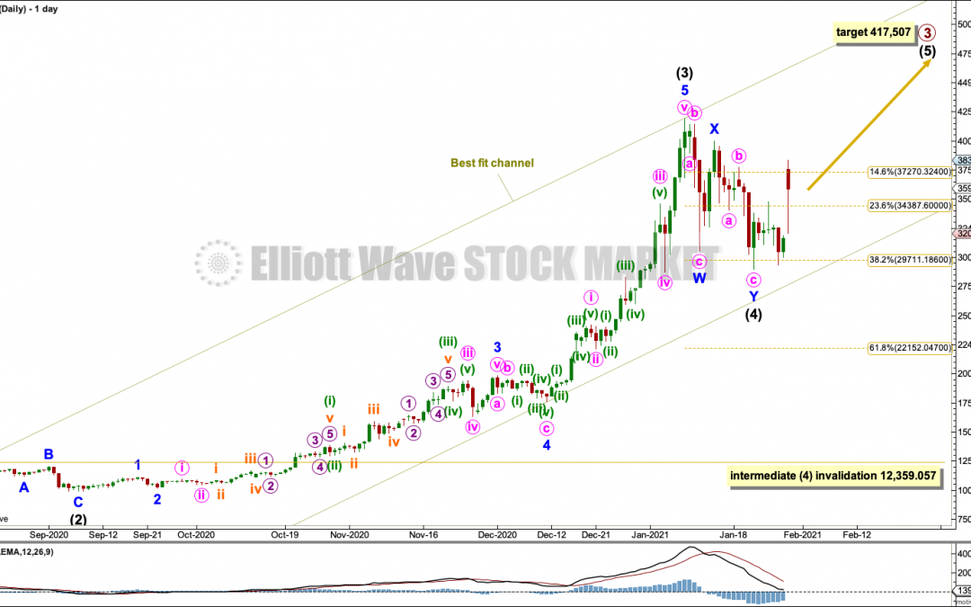 BTCUSD: Elliott Wave and Technical Analysis | Charts – January 29,  2021